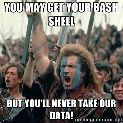 Braveheart declaring Shellshock won't take our data