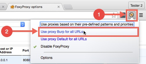 Select Burp proxy for all urls